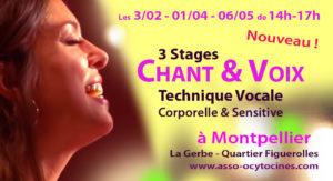 Stage Voix et Chant Montpellier