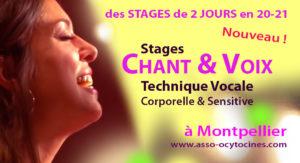 Stage de chant Montpellier